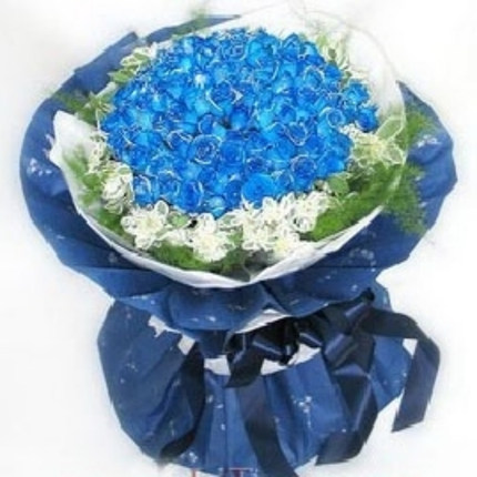 Girlfriend lover anniversary flower delivery Beijing Shanghai Tianjin city of Sanmenxia 99 Blue Rose Florist